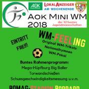 04.06.2018 – Mini WM 2018 startet in Boppard – SSV freut sich auf zahlreiche Besucher und prominenten Besuch